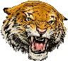 logo_tiger.jpg